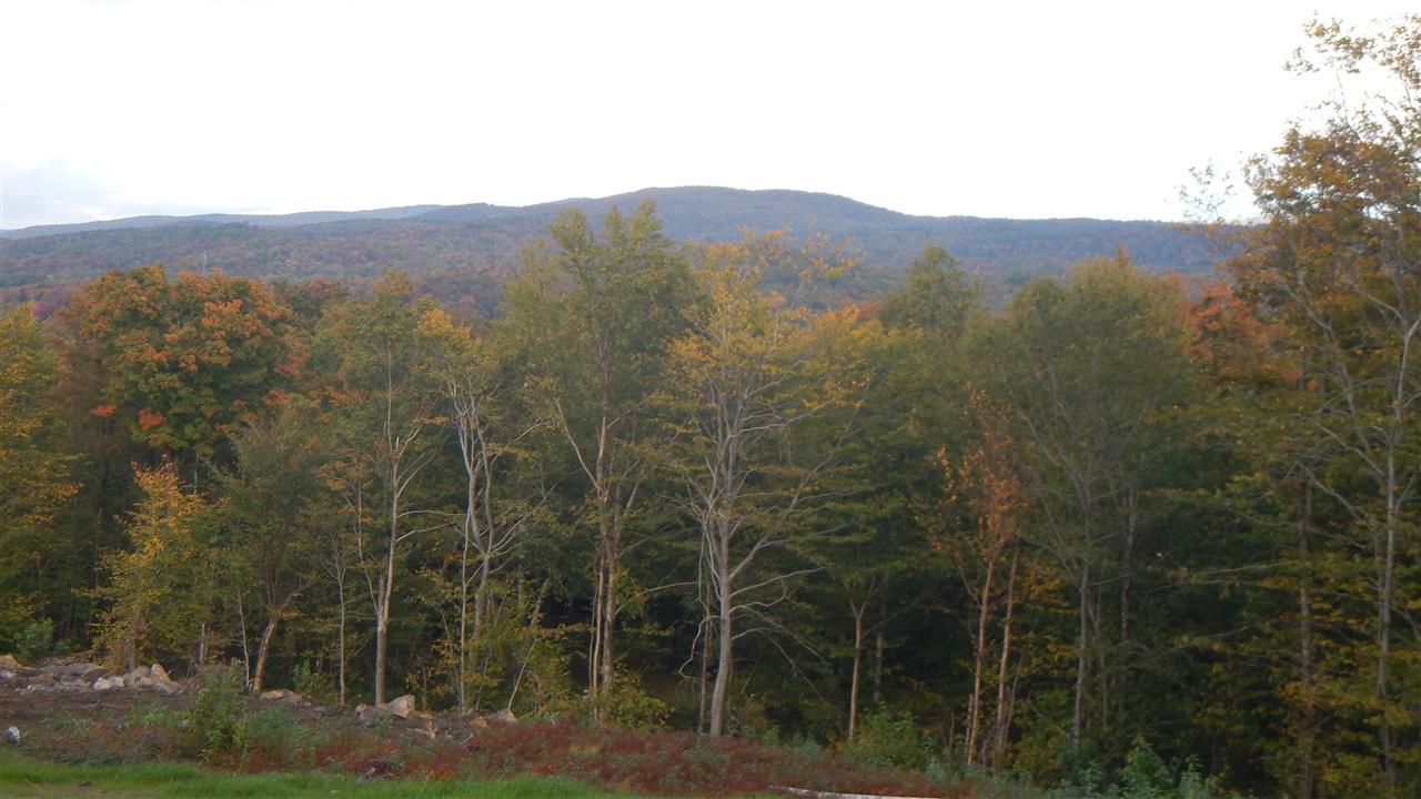 Mount-Snow-Real-Estate-4601482-11