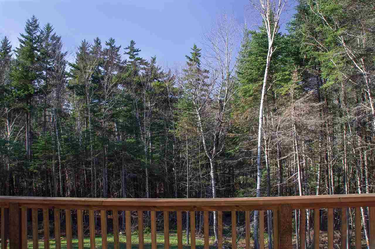 Mount-Snow-Real-Estate-4601794-7