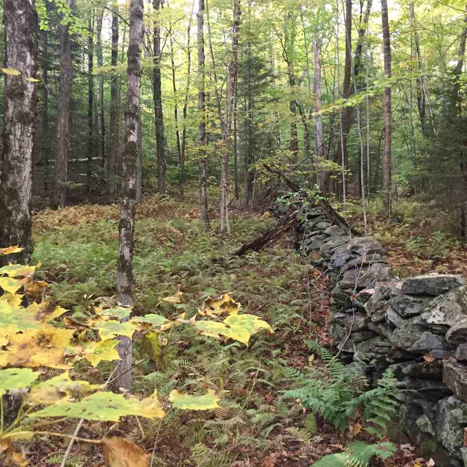 Reading VT 05062Land  for sale $List Price is $19,000