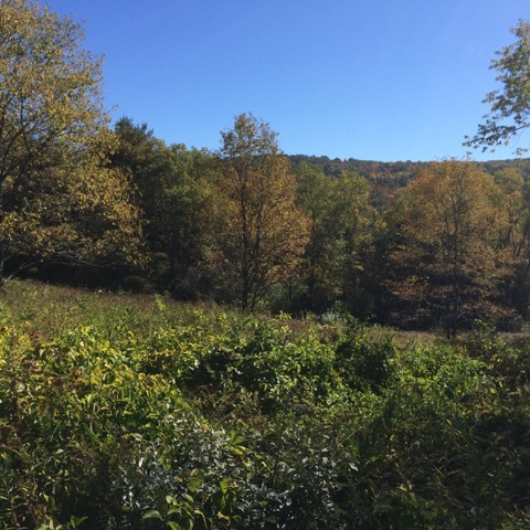 HANOVER NHLand  for sale $$325,000 | 1.9 Acres  | Price Per Acre $0  | Total Lots 2
