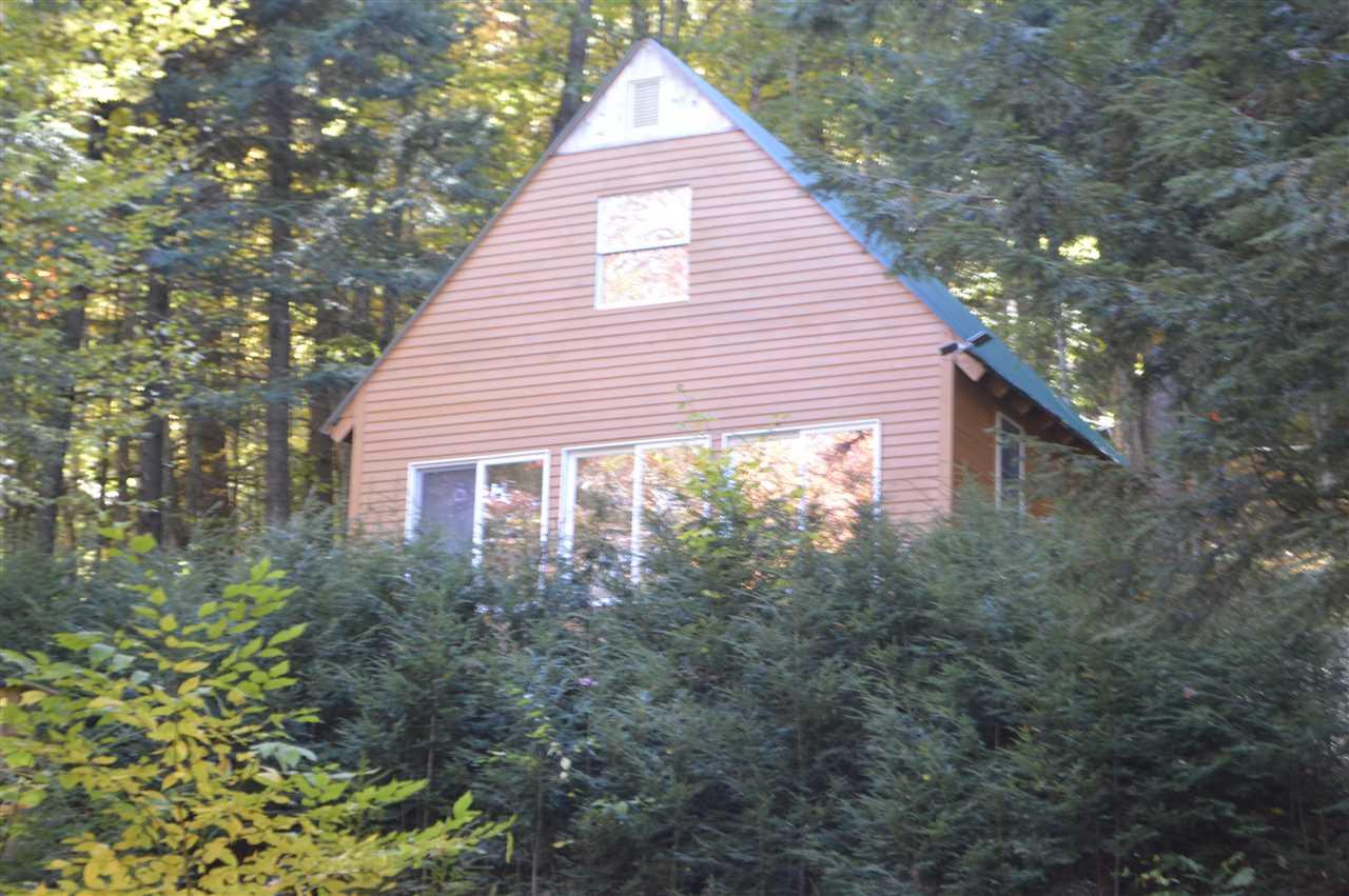 Mount-Snow-Real-Estate-4602974-1