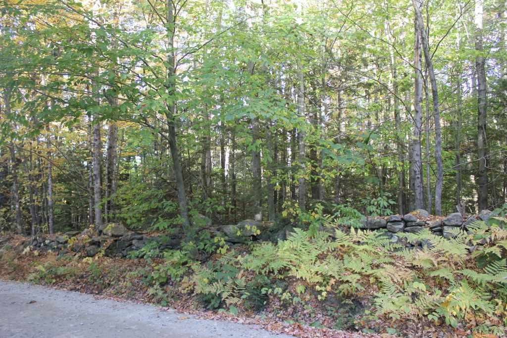 Snell Road, Chester, VT 05143