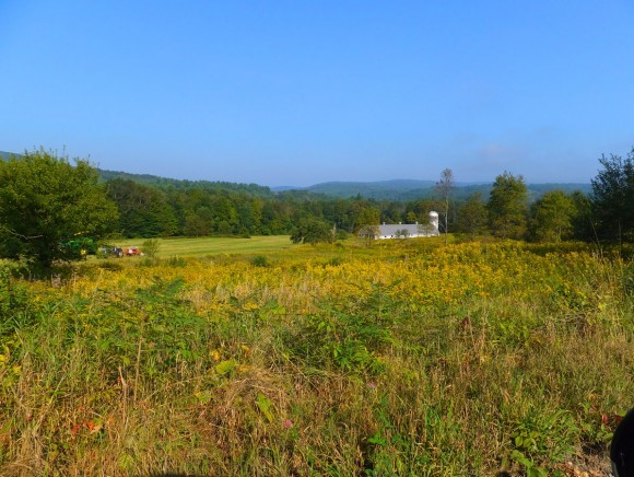 WESTMINSTER VT LAND  for sale $$149,999 | 26.32 Acres  | Price Per Acre $0  | Total Lots 2