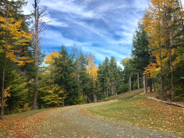 HANOVER NH Land  for sale $$575,000 | 82 Acres  | Price Per Acre $0  | Total Lots 2