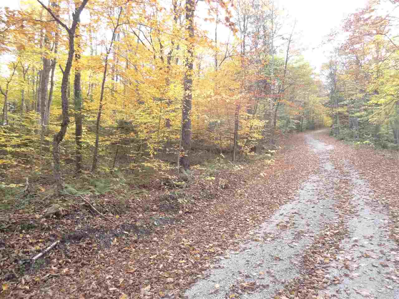 PLYMOUTH VT LAND  for sale $$39,000 | 2.9 Acres  | Price Per Acre $0  | Total Lots 10