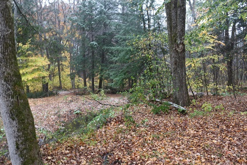 WESTMINSTER VT LAND  for sale $$14,000 | 4.4 Acres  | Price Per Acre $0