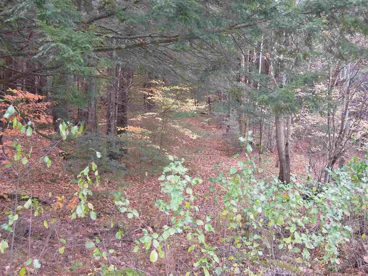 WESTMINSTER VT LAND  for sale $$45,000 | 11.7 Acres  | Price Per Acre $0