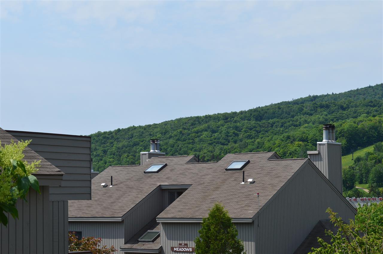 Mount-Snow-Real-Estate-4608066-3
