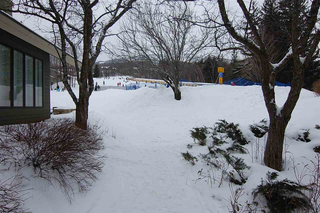 Mount-Snow-Real-Estate-4608167-19
