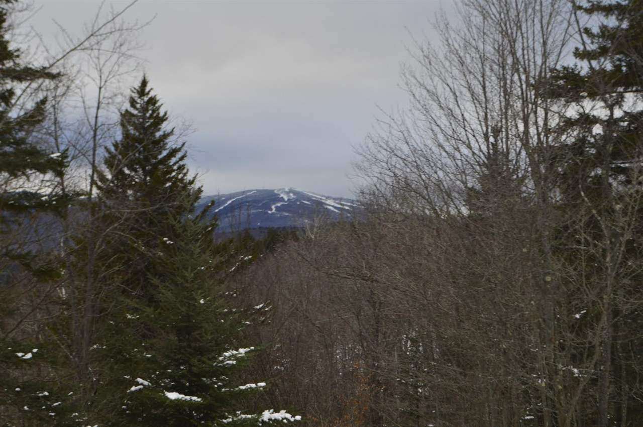 11 Indian Forest, Wilmington, VT 05363