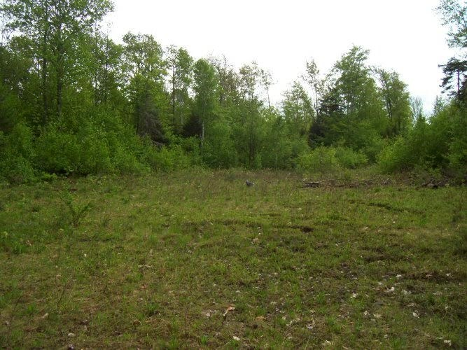 NEWPORT NH LAND  for sale $$55,000 | 5 Acres  | Price Per Acre $0