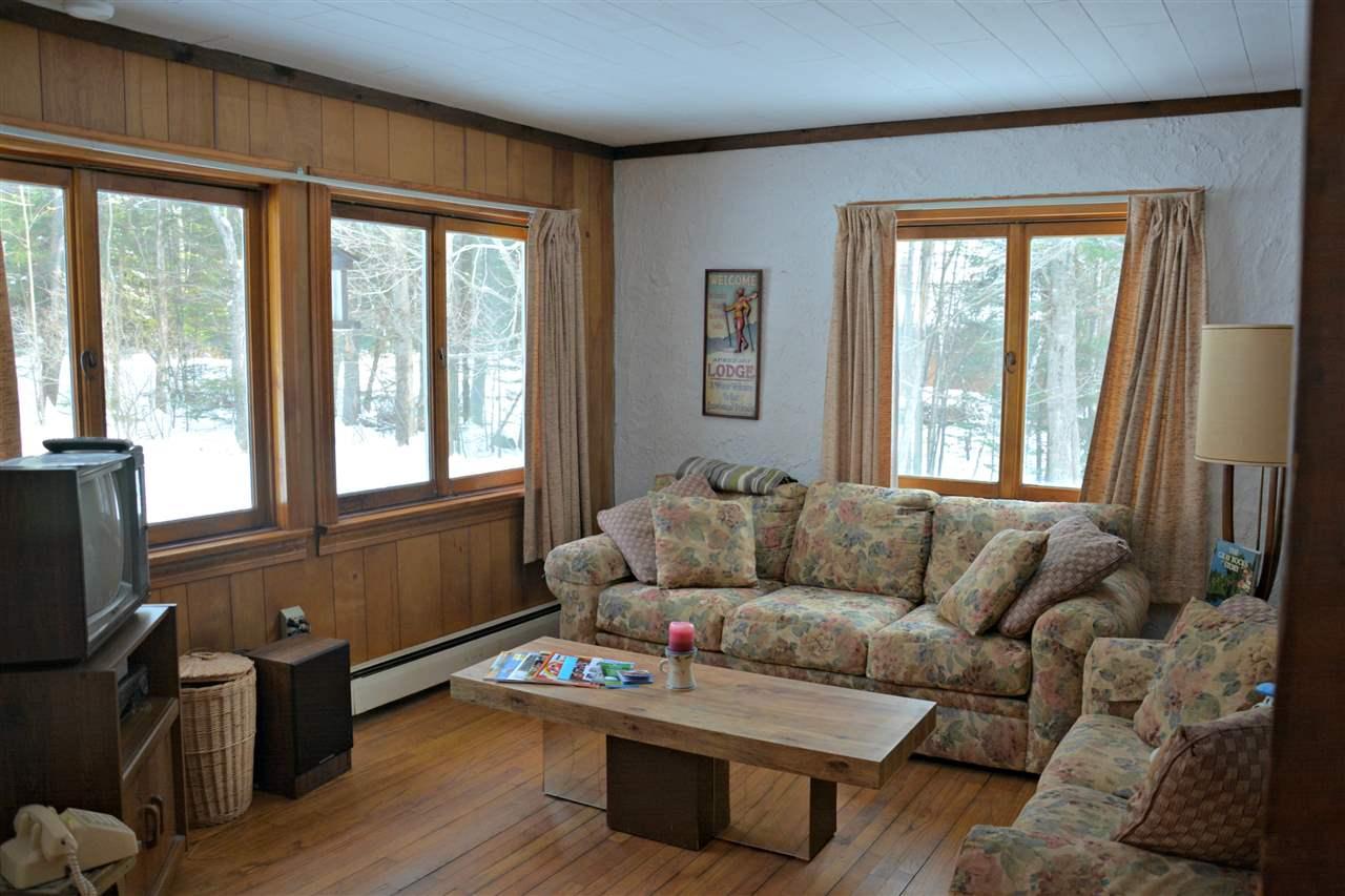 Mount-Snow-Real-Estate-4611739-2
