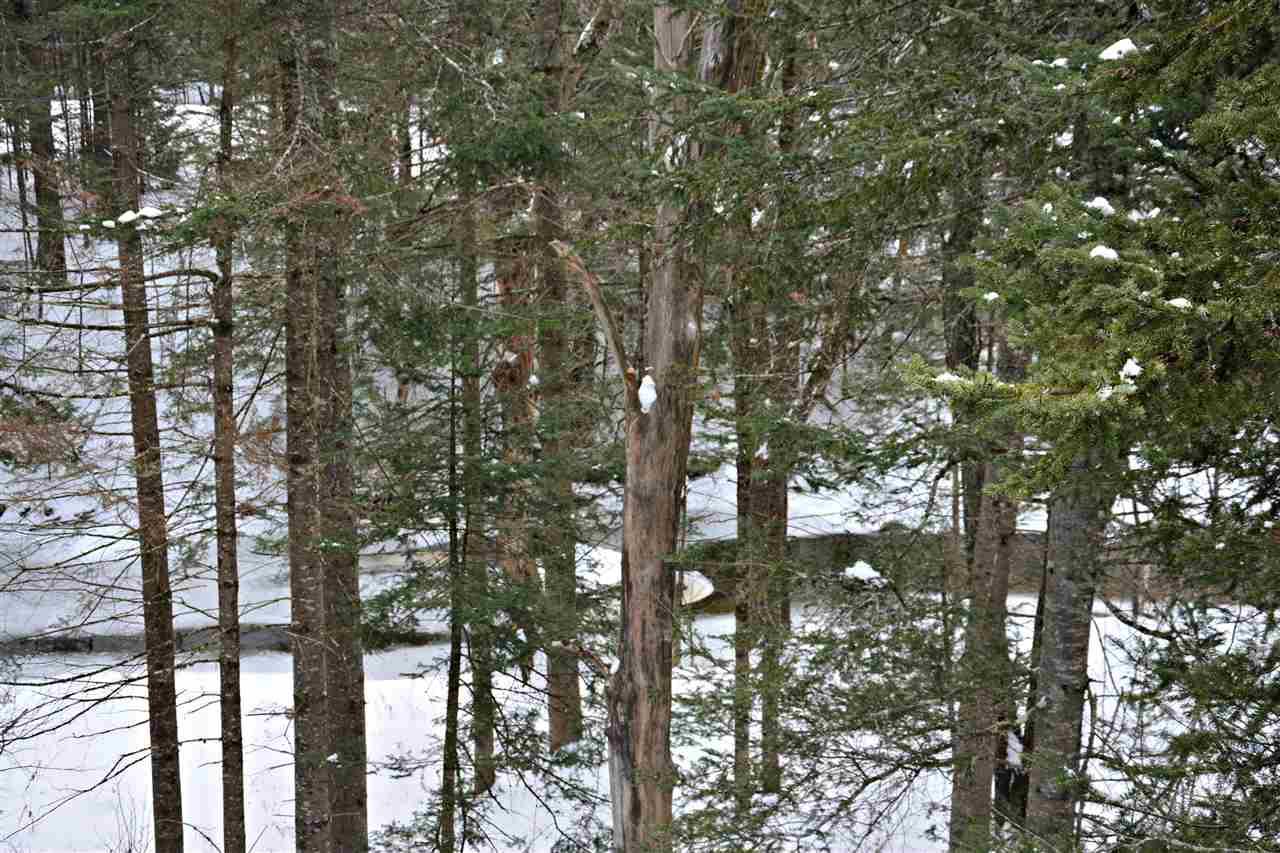 Mount-Snow-Real-Estate-4612386-1
