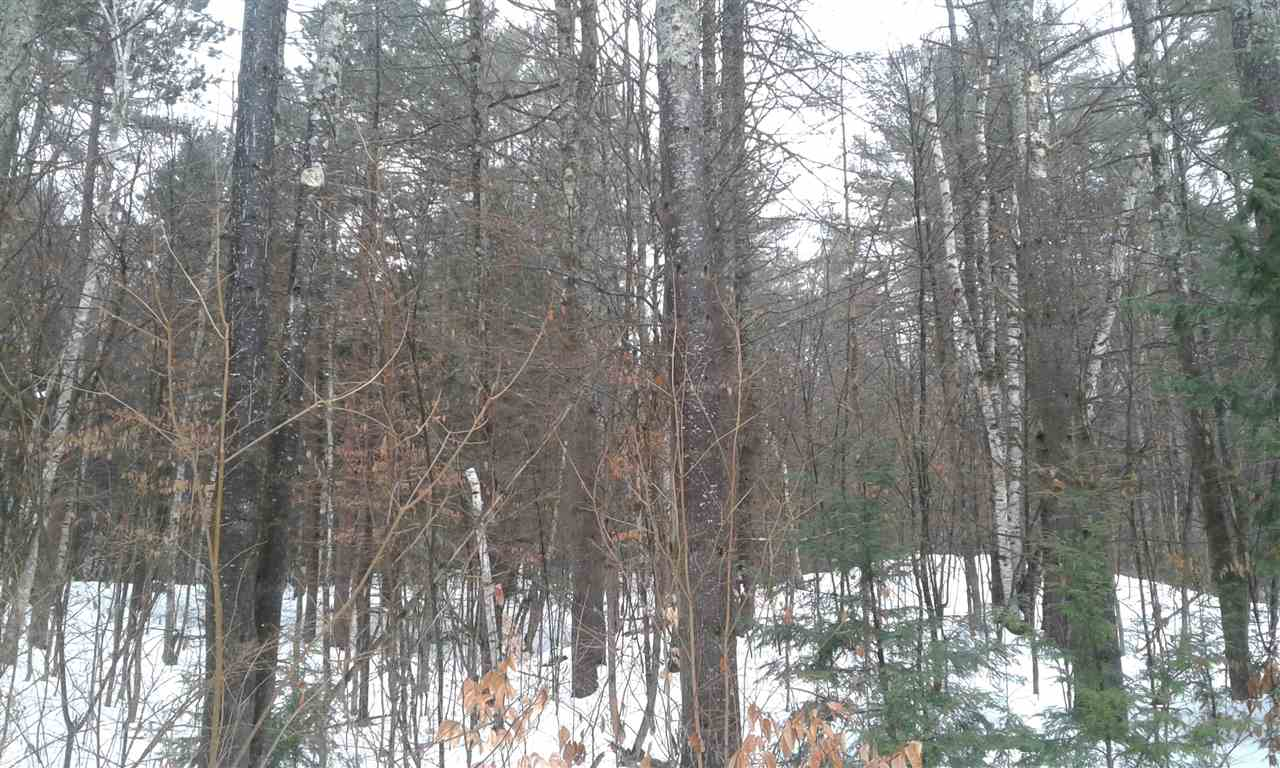This is your chance to purchase one of the original lots offered on Ski Tow Road on Mt Ascutney. Mature trees and sloping terrain makes for a beautiful setting for your dream getaway in the mountains. Mt Ascutney resort offers dining, tennis, swimming, trails for hiking etc. and a not for profit ski area.