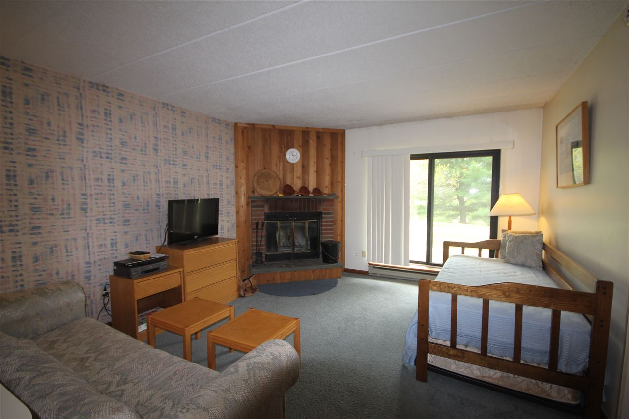 3F Mountain Village 116, Dover, VT 05356