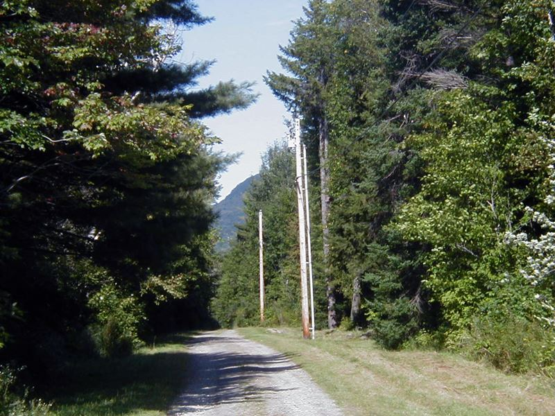 Woods Road South