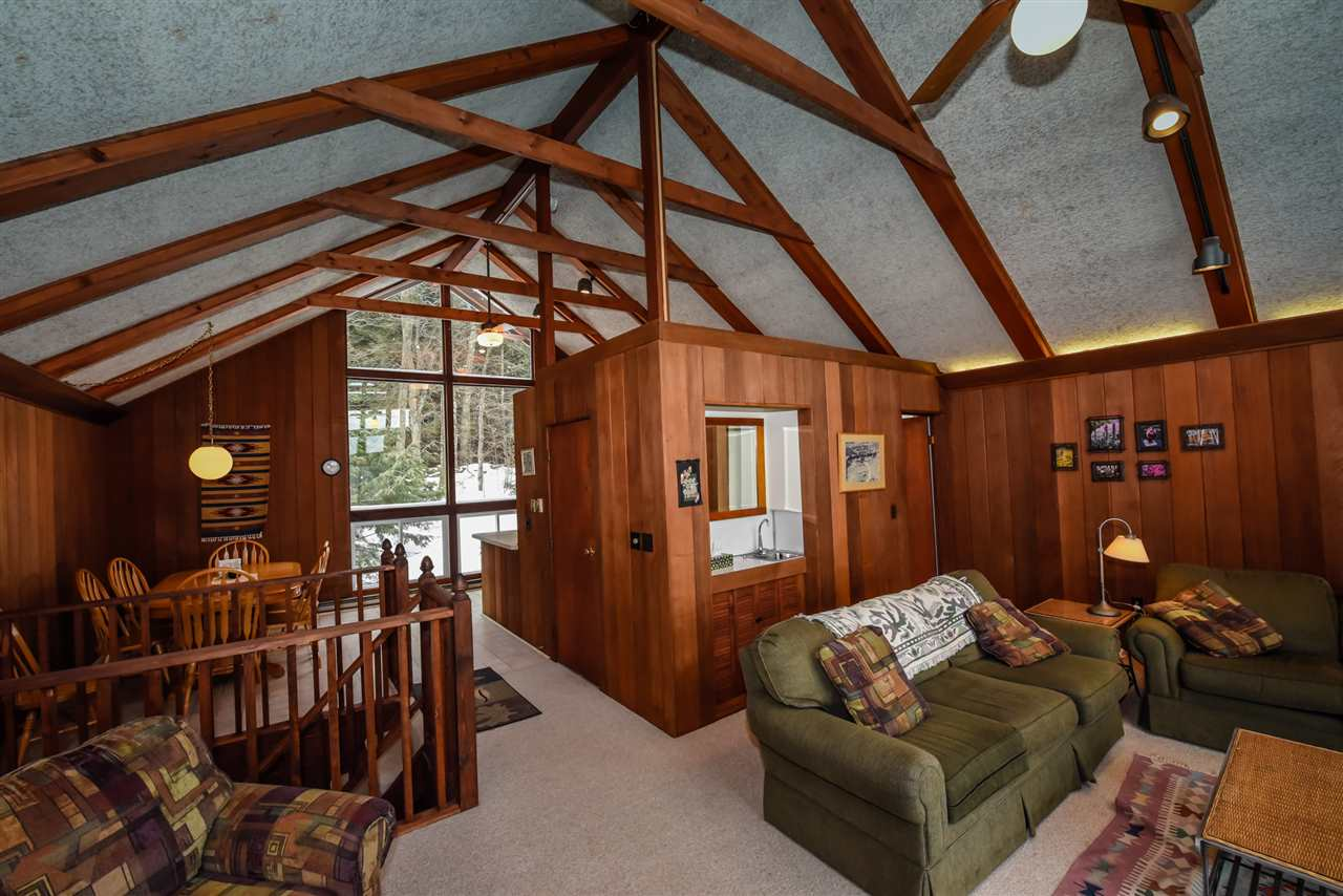 Mount-Snow-Real-Estate-4615476-2