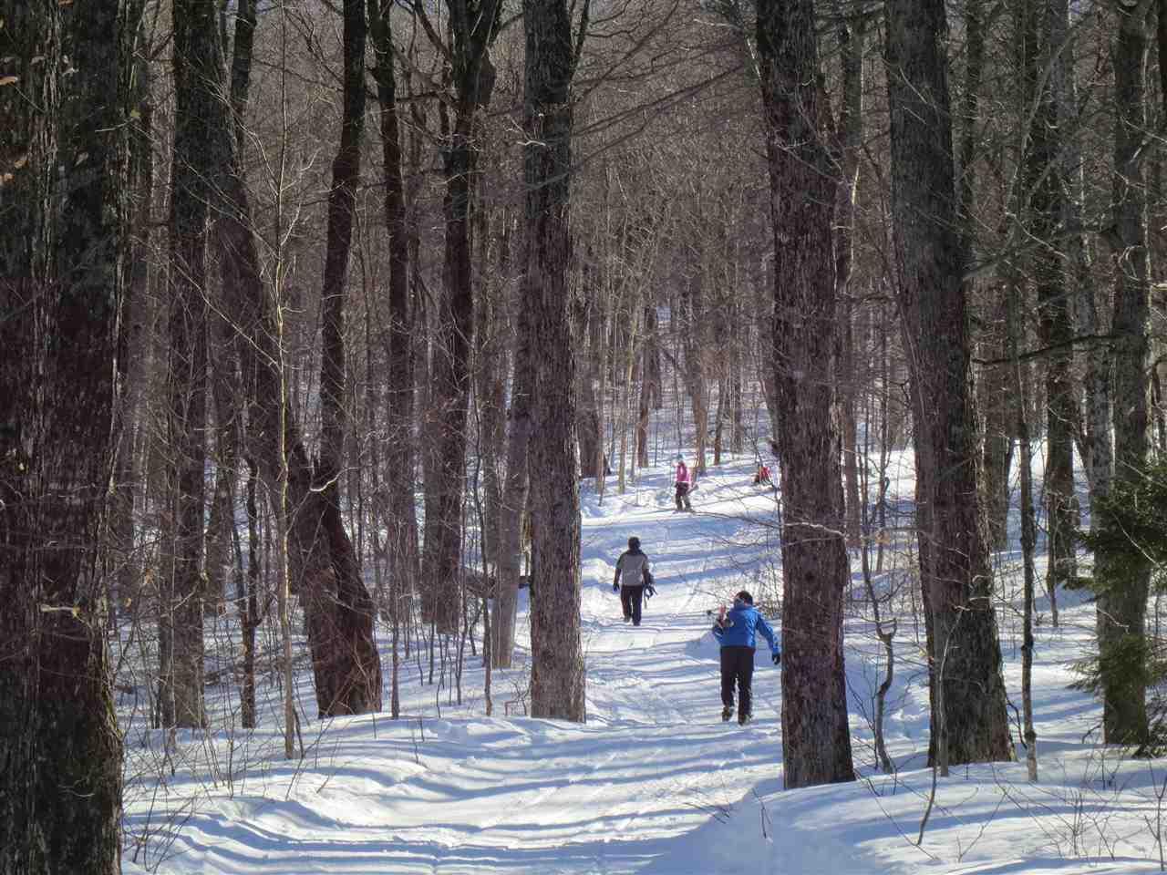 Mount-Snow-Real-Estate-4615709-13