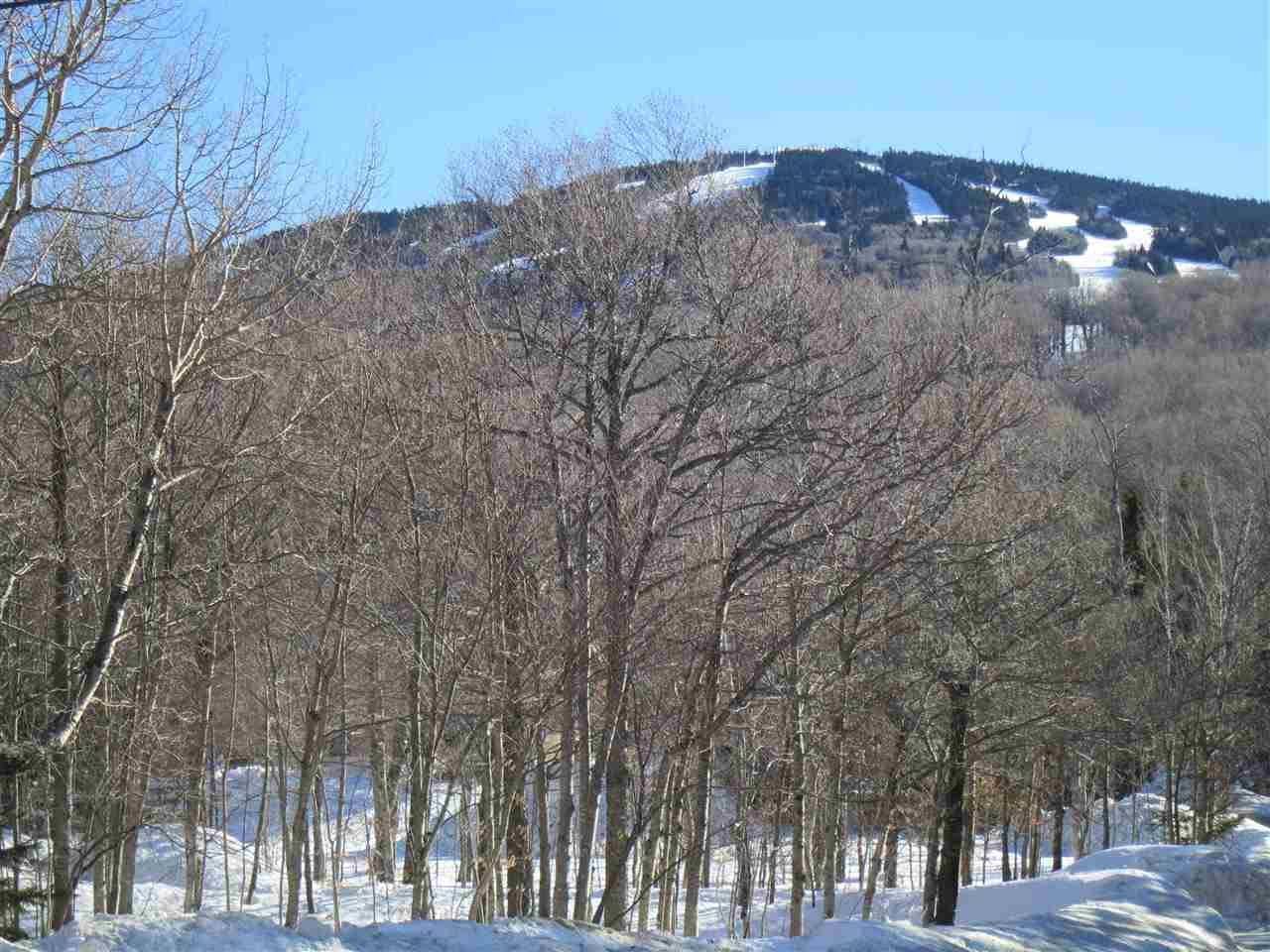 Mount-Snow-Real-Estate-4615709-3