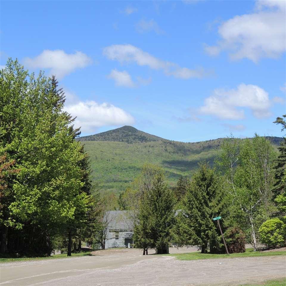 Mount-Snow-Real-Estate-4615965-3