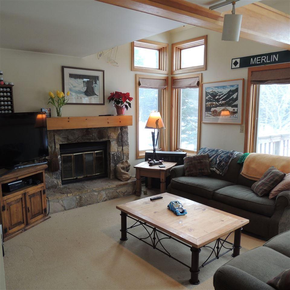 Mount-Snow-Real-Estate-4615965-6