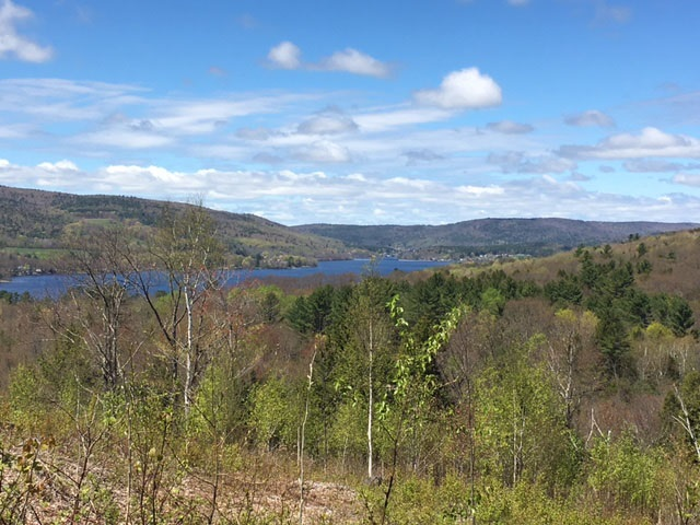 ENFIELD NHLAND  for sale $$225,000 | 12.2 Acres  | Price Per Acre $0