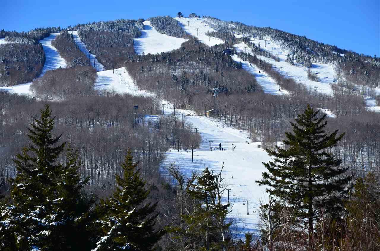 Mount-Snow-Real-Estate-4619218-19