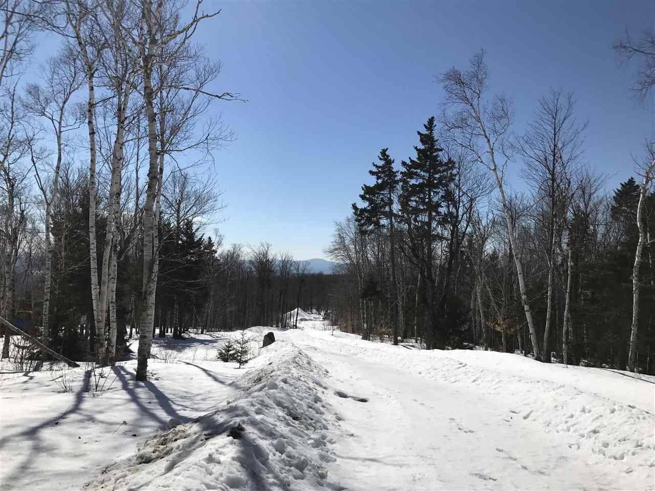 Mount-Snow-Real-Estate-4619244-1