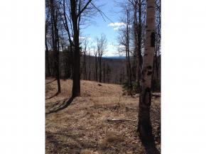 Mount-Snow-Real-Estate-4619244-4