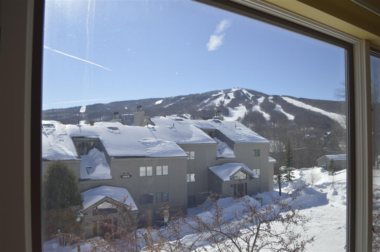 Mount-Snow-Real-Estate-4620476-12