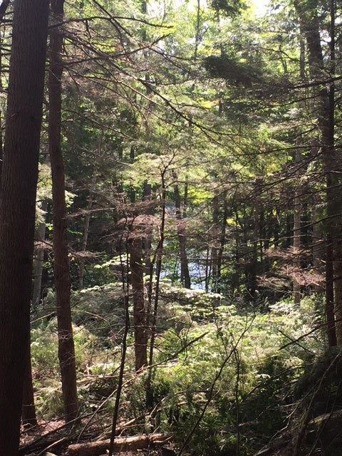 HANOVER NHLand  for sale $$295,000 | 10 Acres  | Price Per Acre $0  | Total Lots 2
