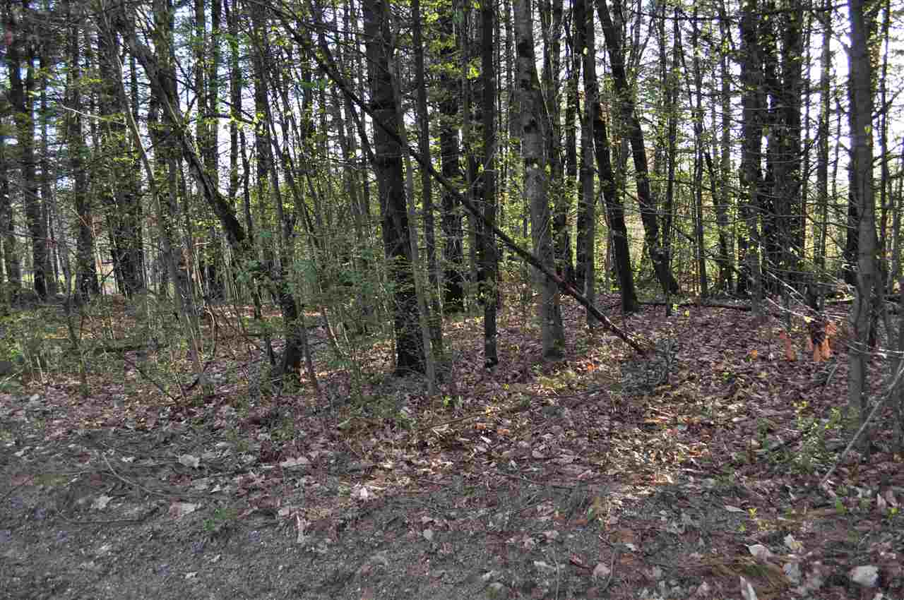 Newbury NH 03255 Land  for sale $List Price is $35,000