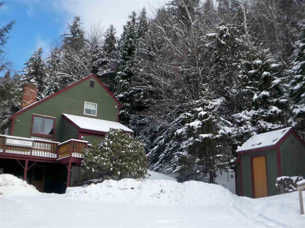 Mount-Snow-Real-Estate-4623747-19