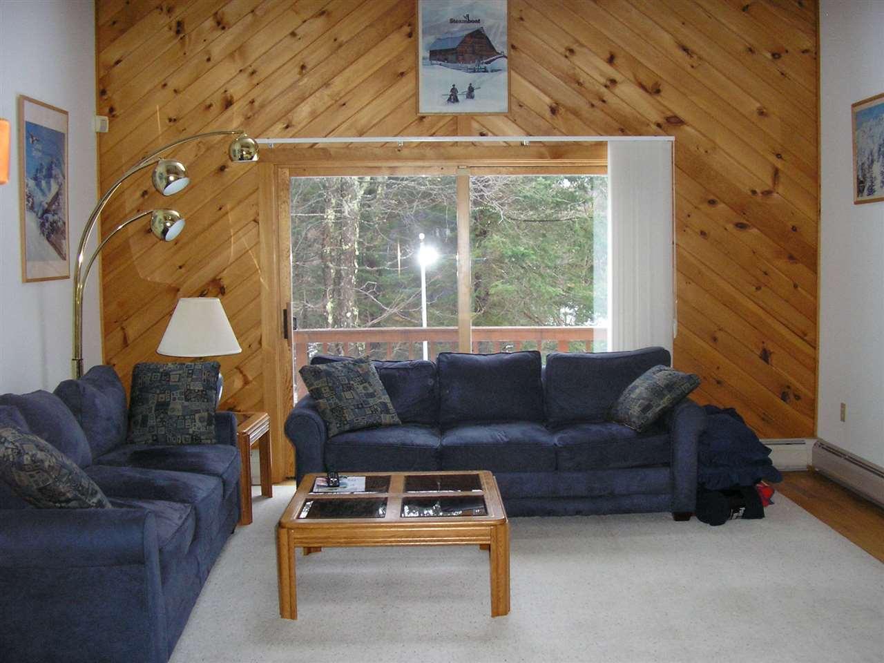 Mount-Snow-Real-Estate-4623897-6