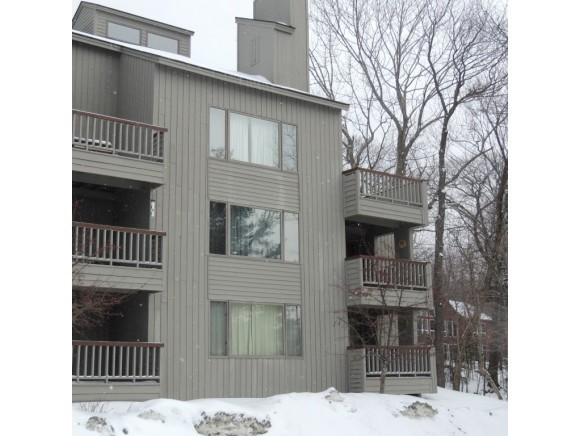 Mount-Snow-Real-Estate-4624617-9