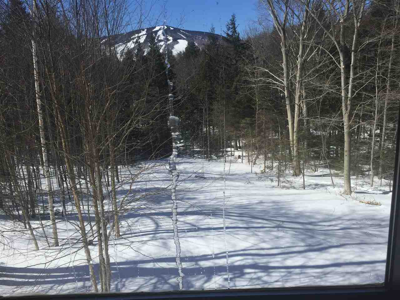 Mount-Snow-Real-Estate-4624619-11