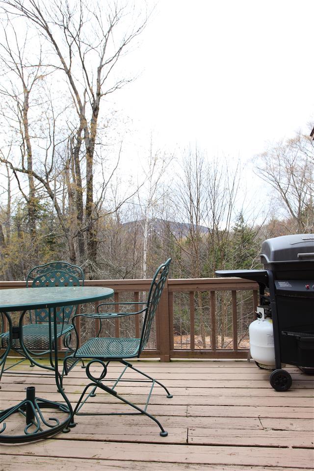 Mount-Snow-Real-Estate-4624619-23