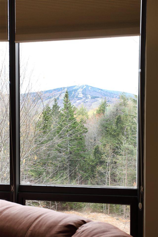 Mount-Snow-Real-Estate-4624619-8