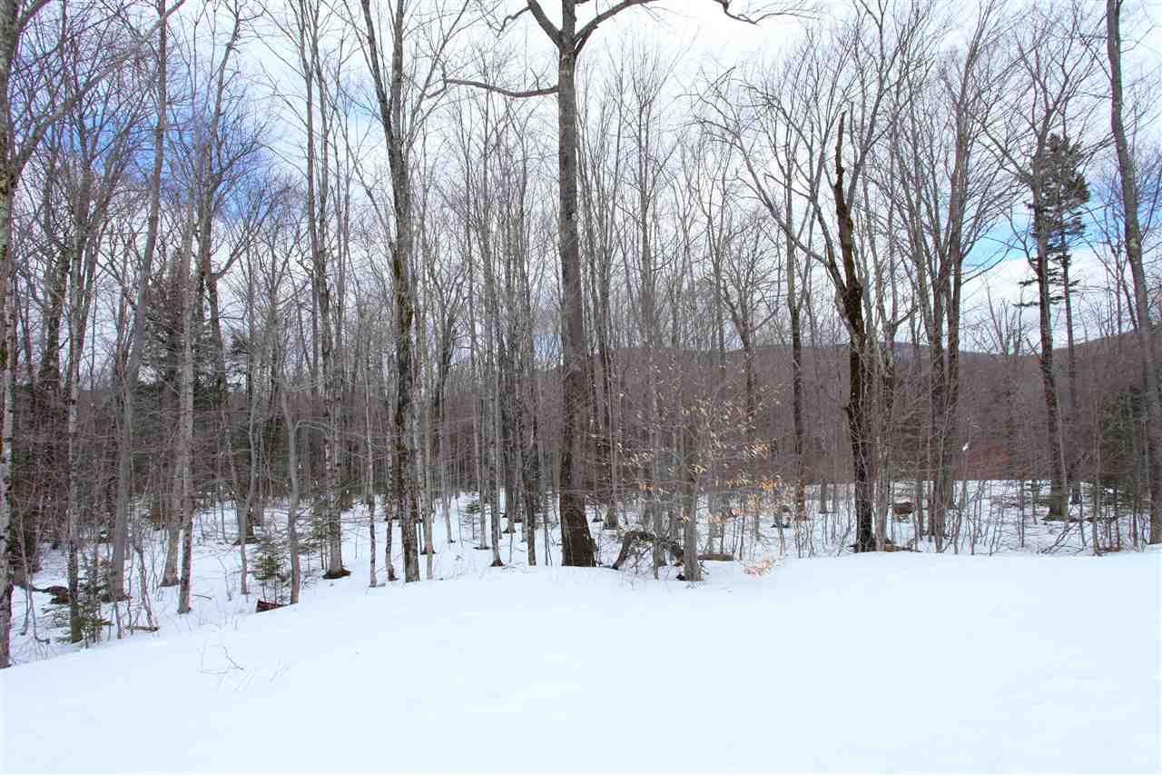 Mount-Snow-Real-Estate-4624701-26