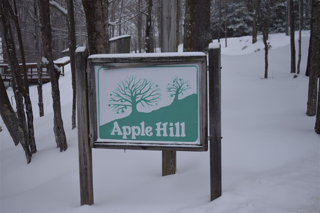 Mount-Snow-Real-Estate-4624824-25