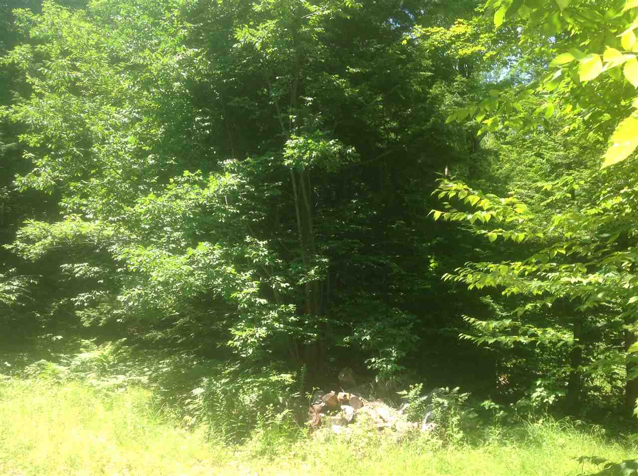 EFFINGHAM NH  LAND  for sale $32,500