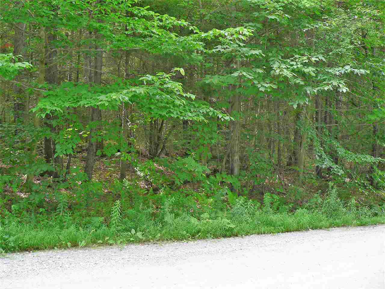 88 Howard Hill Road 88, Andover, VT 05143