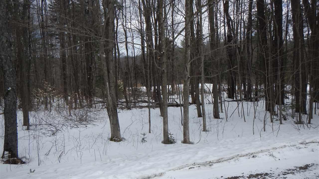 Mount-Snow-Real-Estate-4626125-1