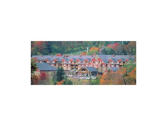 370-3 89 Grand Summit Way 370-3, Dover, VT 05356