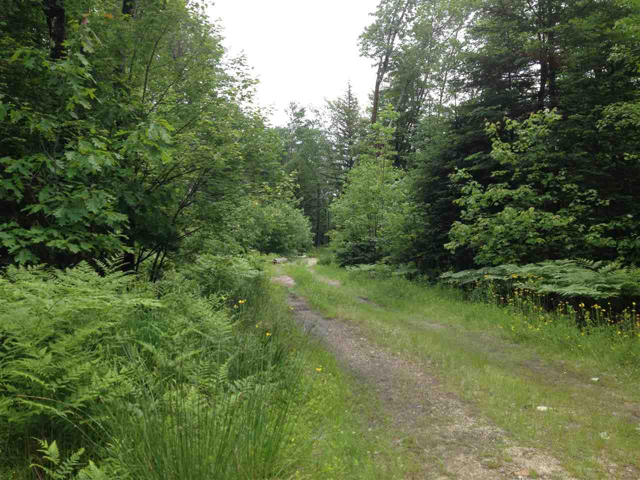 EFFINGHAM NH  LAND  for sale $95,000