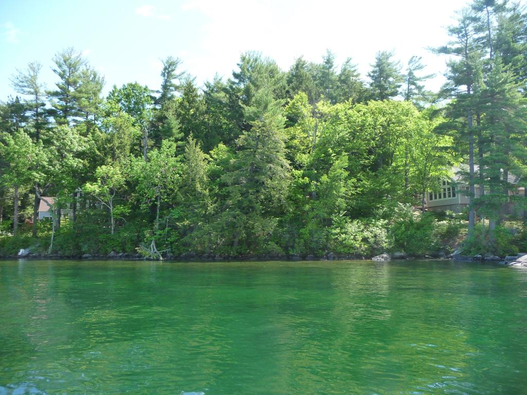 Alton NH Land mls no. 4628926 with 125 ft. Owned waterfront