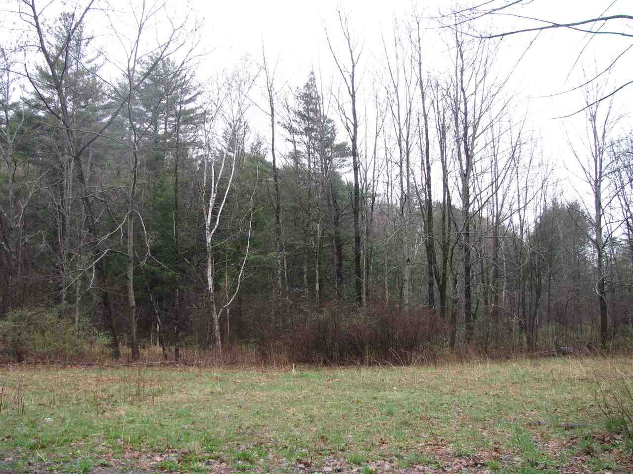 WESTMINSTER VTLAND  for sale $$44,000 | 3 Acres  | Price Per Acre $0