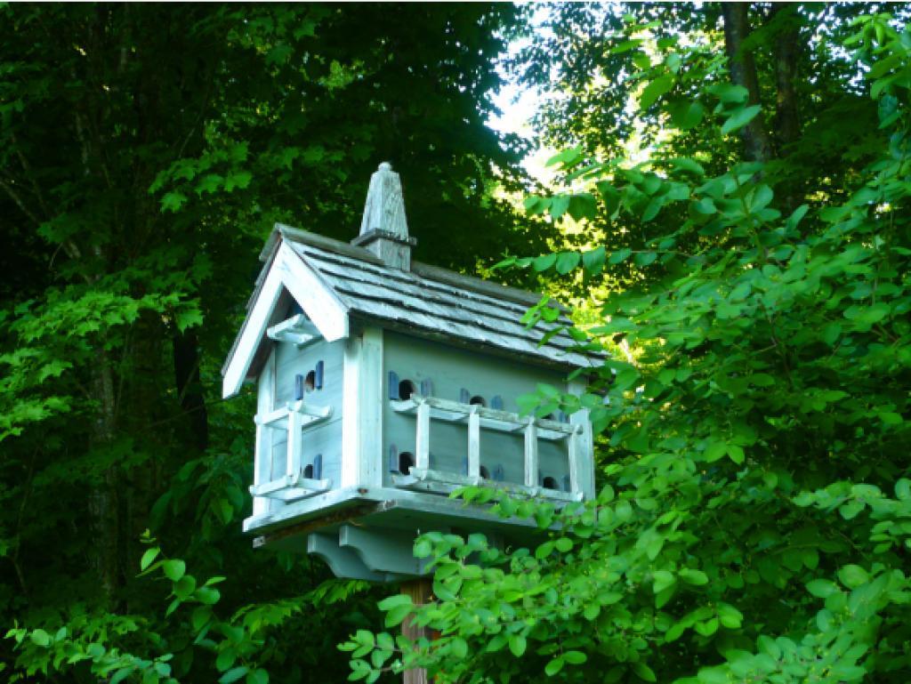 Mount-Snow-Real-Estate-4631025-10