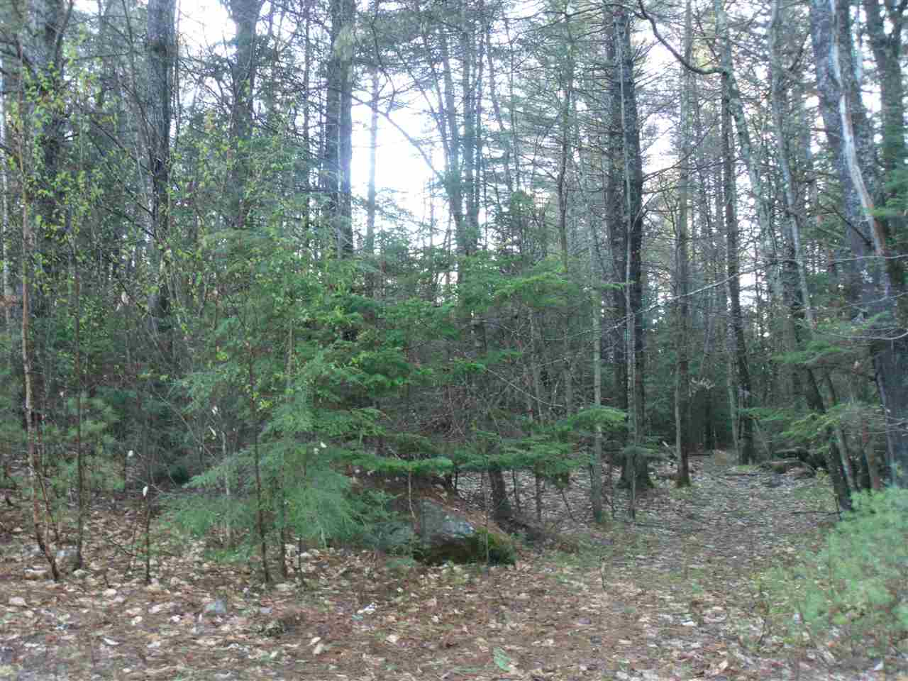 VILLAGE OF CENTER TUFTONBORO IN TOWN OF TUFTONBORO NH Land / Acres for sale