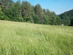 BARNARD VT LAND  for sale $$42,500 | 2.1 Acres  | Price Per Acre $0
